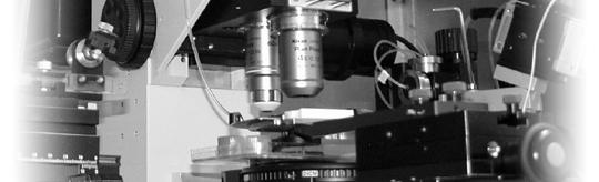 IZN - Institut für Zelluläre Neurowissenschaften
